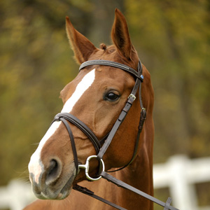 Philippe Fontaine Bridles